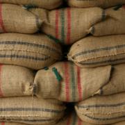 Producción de café en Colombia cierra en 14,2 millones de sacos