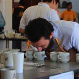 El mejor café colombiano de 2012 fue seleccionado