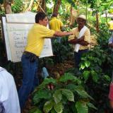 Cenicafé reorienta investigación hacia rentabilidad del productor