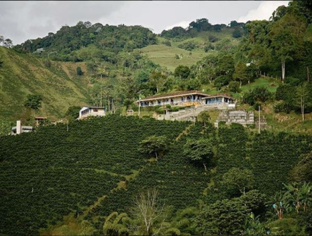 Cci En Besides A Synonym Of Quality Café De Colombia Will Be 100