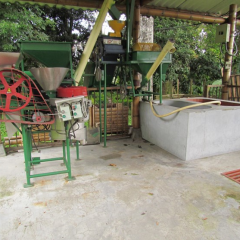 Colombian coffee farming saves 850 million L/year of water