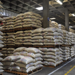 Colombian coffee production keeps 14-million-bag pace in last 12 months