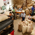 Cooperatives of coffee farmers invest USD 14.3 million in social programs in 2017