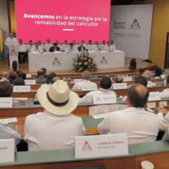 The 85th Coffee Growers Congress sets priorities for the FNC's commercial management