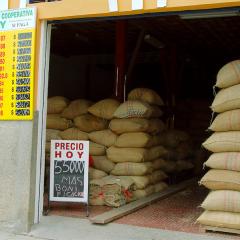 La garantía de compra, un mecanismo para la sostenibilidad