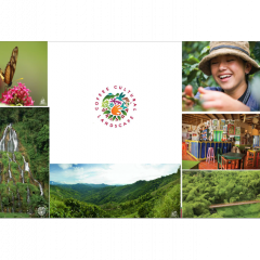 Paisaje Cultural Cafetero, un café excepcional en el rico portafolio de Café de Colombia