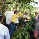 The FNC Business Management Program strengthens coffee farms