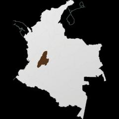 Tolima, otro origen relevante de Café de Colombia