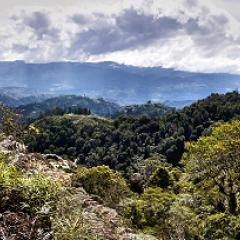 FNC adopta medidas de apoyo a los productores afectados por El Niño
