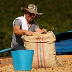 Producción de Café de Colombia crece 13% en abril