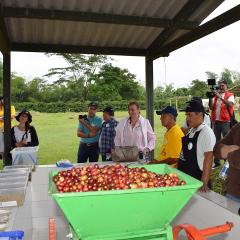 Conozca a los productores de la subasta  Taza de la Excelencia 2015