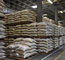 Year-to-date Colombian coffee production falls slightly