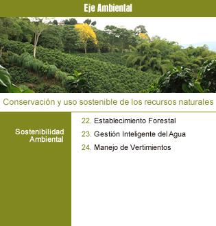 Proyectos Ambiental