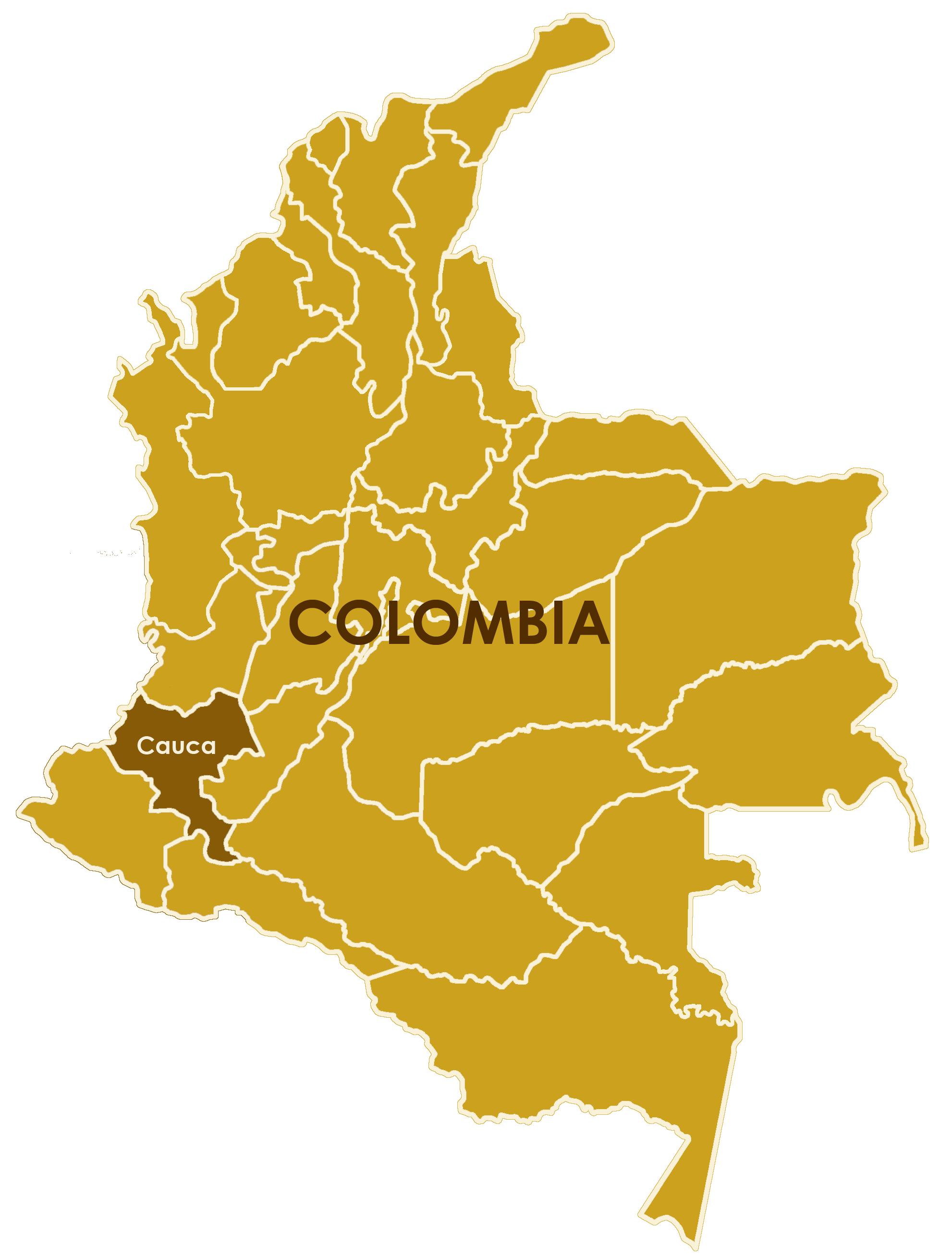 colombia le forze armate rivoluzionarie della colombia